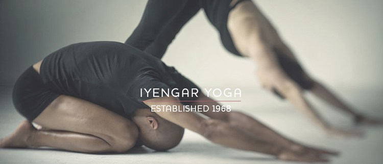 Iyengar Yoga and Other Modalities